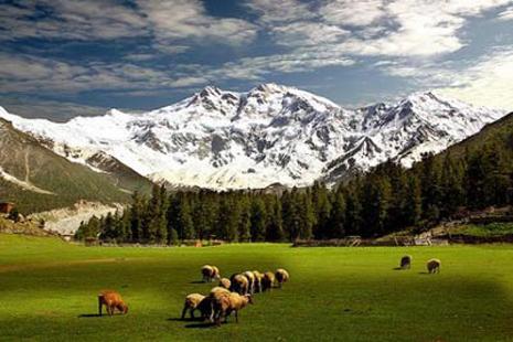 Political Agony of Gilgit-Baltistan